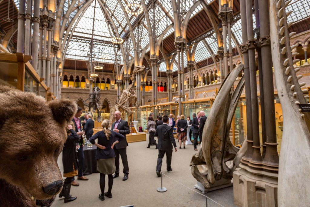 Conference Photographer at Oxford Museum of Natural History